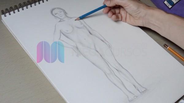 Descubre cómo es la figura humana femenina