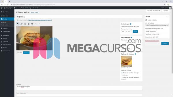 WordPress - Biblioteca multimedia