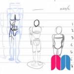 Dividiendo el cuerpo en unidades