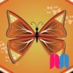Clase Proyecto 2: Mariposas
