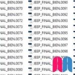 Jeep Shuffle