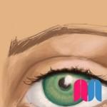 Ojos, nariz, boca y orejas I