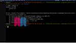 Programación básica